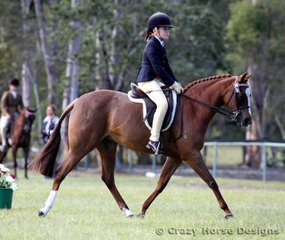 Smithsfield Bewitching & Katelyn Burgess were competitors in Small Ridden Pony