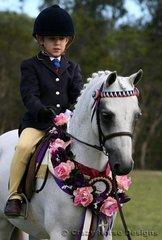 Champion Lead Line Pony was Warrenwood Sterling ridden by Harrison Jarard