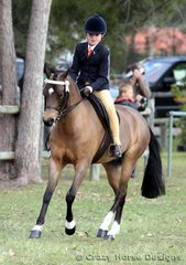 Bridgette Chalmers rode her pony Lakevale Silverleigh in the Small Ridden Pony class