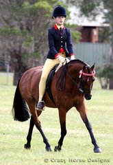 Little Paddocks Self Portrait ridden by Tahlia Christou were competitors in the Large Ridden Pony class