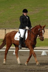 Monique Baker and Tnabi finished the dressage section of the Newcomer class on a score of 73.8.