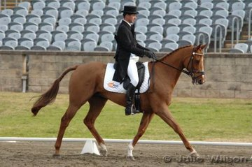 Sam Lyle and Clasic Mischief competed in the CNC**.