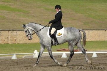 Alyson King rode Be My Love in the Intro Division 2.