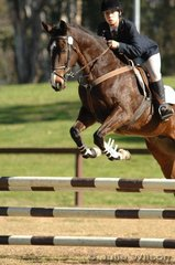 Elissa Schneider rode Imposing Native in the Preliminary Division 2.