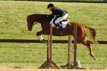 Martina Speechley and Special Edition competed in the Preliminary Division 1.