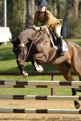 Caroline Montgomery rode the good looking Balmoral Sahara J in the Preliminary Division 2.