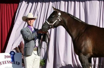 State Champion Yearling Filly was Noble Dove shown by Allan Briskey owned by B & J Brakin