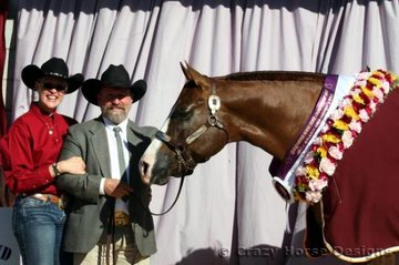 Grand Champion Mare Exhibit was Wadayarekon Shes Magic shown here with proud owners Merilyn & Bevin Schulz