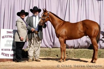 Bevin Schulz & Wadayareckon Hes Cool with trainer Samantha Daley were Reserve State Champions in Open & Amateur Owner Weanling Colt.