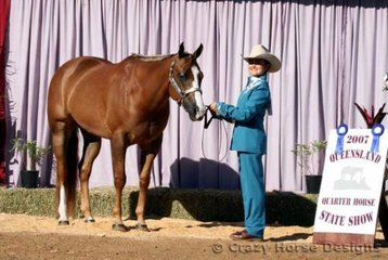 State Champion Youth 15 Years & Over and AmQHA Youth Showmanship was Melissa Benson & Winderadeen Passin Blue