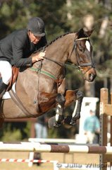 Ian Timmis rides Vince Z in the showjumping section of the Pre-Novice Division 2.