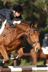 Adam Petherbridge and Sandhills Maxfly did not have the best of showjumping rounds in the Pre-Novice Division 1,  but hope to improve their postion after the cross country.