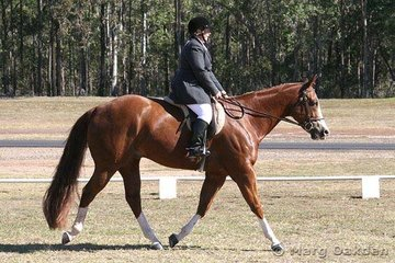 Riverdowns Luvit Classy & Leanne Smith were the champions of the Amateur Preliminary Dressage.