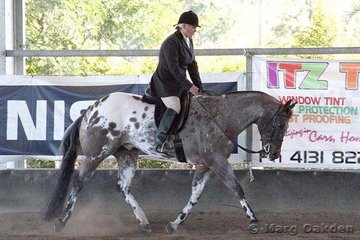 Colonels Tivio & Leanne Bartless competing in the Senior Horse Hunter Under Saddle.