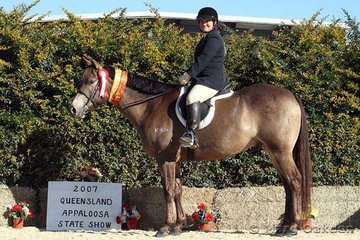 Julie Janson thoroughly enjoyed her successes in the English classes aboard her gelding Me & Mr Jones.