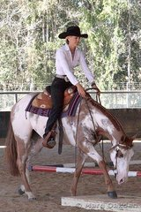 Felicity Forsyth showed Zippos Leading Lady in the 2 Year Old Trail class for owner Jan Biddle.
