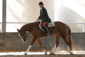 Boodjaru Imagination & Karen Peek competing in the 2 Year Old Hunter Under Saddle class.