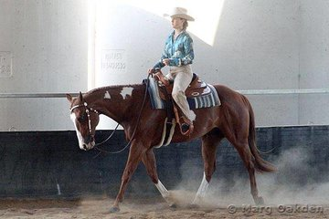 Lisa Gant & Fire Delight under the three judges' eyes in the Junior Youth Western Pleasure.