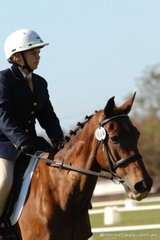 Laura Nutton and Buddy look very serious as they comlete their preliminary 1.4 test.