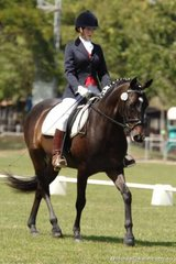 Jodie Bell and Halik Fontayne took first place in the Assoc. Novice 2.4.