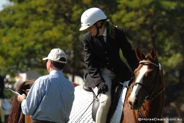 Catherine Mayo and her horse Just Gus are paying full attention to Victorian Judge Linden Hearn, as he gives them some directions after an error of course. Linden was very encouraging and helpful to a number of young riders making their first visit to the Royal dressage arena.
