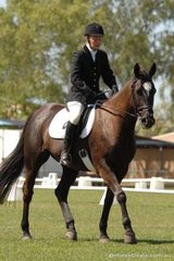 Vanessa Lines rode the watchful Irish Town into third place in the Assoc. Preliminary 1.4.