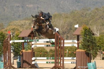 Victorian rider, Robert Agnew with his former Australian Champion, 'DP Envy' competing in the final Gold Series qualifier.