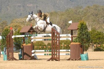 Victorian rider, Brook Dobbin with his always photogenic 'GP Shine' jumping in the third Gold Series Qualifier.