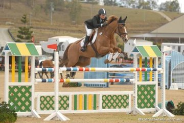 Talented Western Australian young rider, Anna McGregor, with her talented Thoroughbred, 'Mandarin', jumping a clear first round in the final Silver Series qualifier.