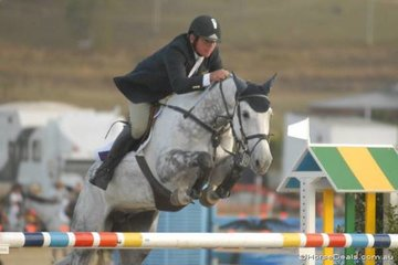 Adam Mellers with another lovely imported mare, 'Carinthe Z' pictured jumping in the final Silver Series qualifier.