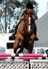 Misterripper & Lorelle Arnold were winners of the 1.15m Welcome Stakes