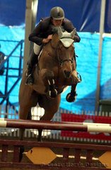 Bluesta & Mark Brooks were 2nd place in the 1.35m Class with a clear round & time of 79.99 seconds
