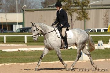 Angus Wilkinson and MP Spinnaker achieved the handy dressage score of 43.8 in the Pre-Novice A.