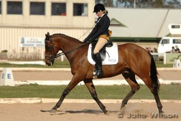 Hayley White and Sir Sculptor start their dressage test in the Pre-Novice A.