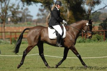 Reubrecht Aude rode Carl to ninth place after the dressage phase of the Preliminary C.
