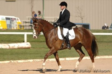 Experienced eventing rider Stephen Keir rode the promising mare, Megara in the Pre-Novice A.