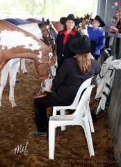 Best seat in the house, with the wet conditions outside competitors made the most of the dry indoor arena