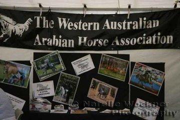 The Western Australian Arabian Horse Association display stand was well represented by many Western Australian Arabian studs