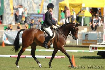 Mr McKenzie exhibited by Jill Townsend, took third place in the Light Weight Hack over 15 hands