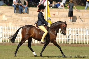 Annabella Drexel rode Silkwood Heaven Can Wait to win the ridden Riding Pony Mare or Gelding over 12.2 hh - 13.2hh.