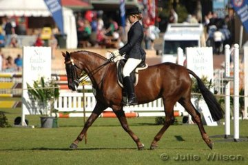 Gabriella Robson rode Belcam Galina to fourth place in the Medium Weight Hack over 15 hands.
