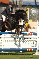 Caitlin Bolger rode a stylish clear round on the stallion, Sagamore Maestro in the Young Rider AM5.