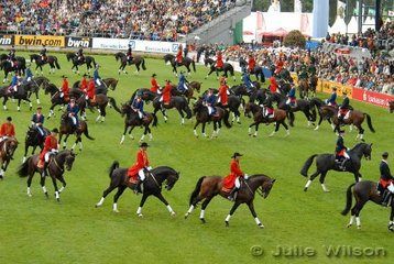 The State Stud Stallions.