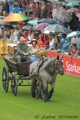 Carriage Driving has a long tradition at Aachen and as was expected they played a big part in the Opening Ceremony.