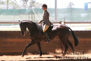 Working out to win the Reserve Champion Show Hunter Galloway Of The Year 'Interlude' ridden by Karen Shaw