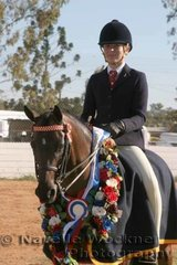 Champion Large Pony Of The Year 'Westlake Hummingbird' ridden by Jordan McDowall from Mackay