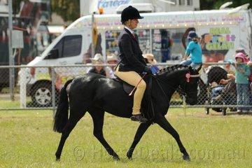 Lisa Luketic rode her own, 'Deeplake Tinkerbell' to fourth place in the class for Novice Pony Under 12hh.