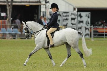 Amelia Sadler had a good day with her lovely, 'Karlana Applause' which got off to a good start by taking second place in the strong class for Smartest On Parade, Riders 10-12 Years. They went on to take second place in the class for Open Pony 12.2-13hh.