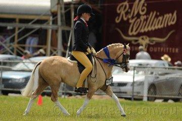 Charlotte Millard rode Emma and Gloria Barlow's, 'Kenda Park Chardonnay' to win the class for Open Pony N.E. 11hh.