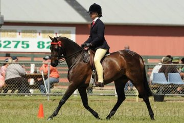 Successful young rider, Zoe Murray rode her 'Willowcroft Emblems Delight' to win the class for Novice Pony 13.2-14hh.